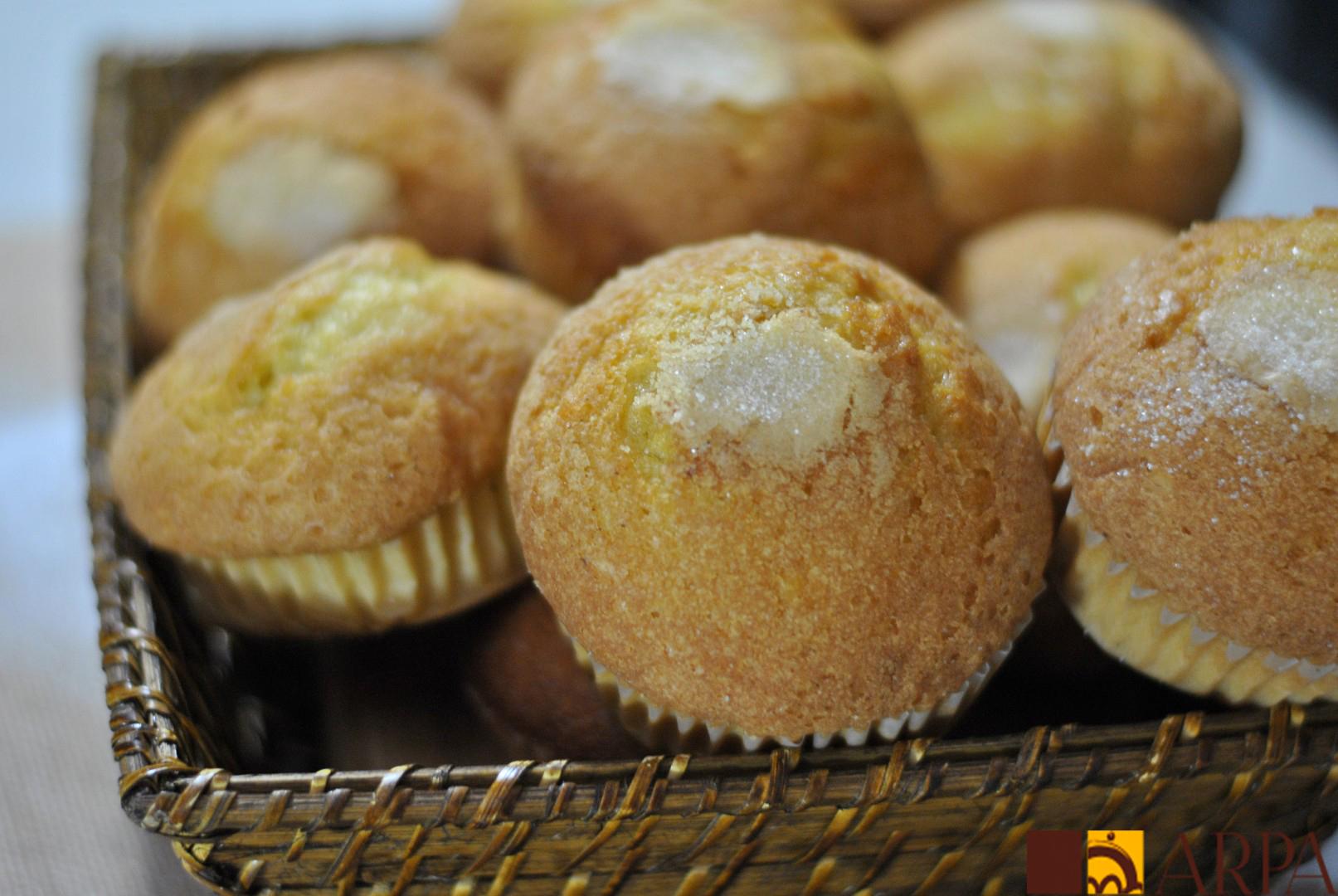 Presentación magdalenas artesanas cubiertas de azúcar